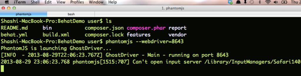 PhantomJS-WebDriver