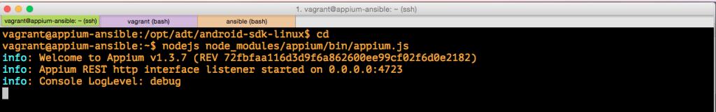 vagrant_ssh_appium